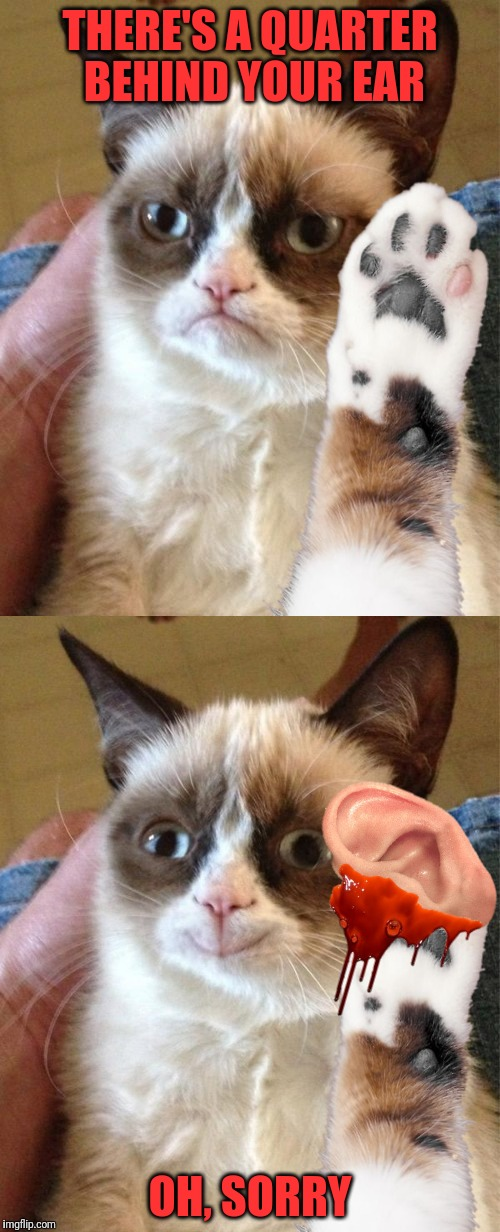 Grumpy Cat Learned A New Trick | THERE'S A QUARTER BEHIND YOUR EAR OH, SORRY | image tagged in grumpy cat,memes,magic | made w/ Imgflip meme maker