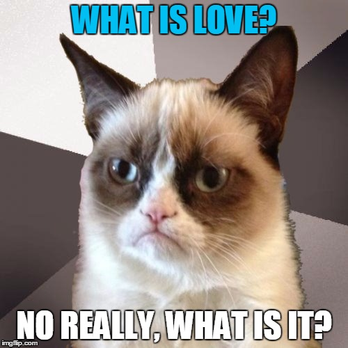 Grumpy Cat hears the music, but doesn't know the words | WHAT IS LOVE? NO REALLY, WHAT IS IT? | image tagged in musically malicious grumpy cat,grumpy cat,memes,singing,what is love,dun dun dun | made w/ Imgflip meme maker