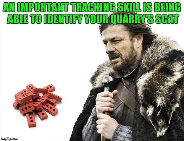 Brace Yourselves X is Coming Meme | AN IMPORTANT TRACKING SKILL IS BEING ABLE TO IDENTIFY YOUR QUARRY'S SCAT | image tagged in memes,brace yourselves x is coming | made w/ Imgflip meme maker