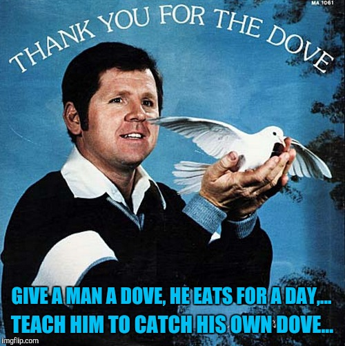 Bad album art week,  KenJ and shabbyrose2 event. Well, isn't this dovely | GIVE A MAN A DOVE, HE EATS FOR A DAY,... TEACH HIM TO CATCH HIS OWN DOVE... | image tagged in bad album art week,sewmyeyesshut,funny memes,memes | made w/ Imgflip meme maker