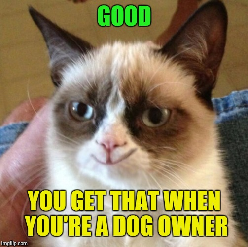 GOOD YOU GET THAT WHEN YOU'RE A DOG OWNER | made w/ Imgflip meme maker