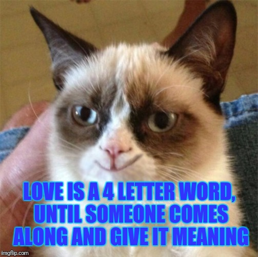 LOVE IS A 4 LETTER WORD, UNTIL SOMEONE COMES ALONG AND GIVE IT MEANING | made w/ Imgflip meme maker