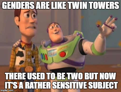 X, X Everywhere Meme | GENDERS ARE LIKE TWIN TOWERS THERE USED TO BE TWO BUT NOW IT'S A RATHER SENSITIVE SUBJECT | image tagged in memes,x,x everywhere,x x everywhere | made w/ Imgflip meme maker