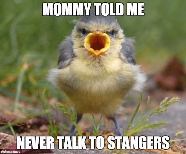MOMMY TOLD ME NEVER TALK TO STANGERS | made w/ Imgflip meme maker