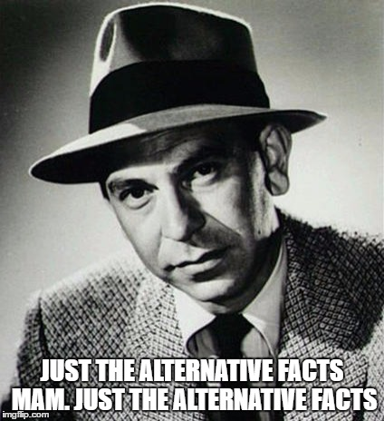 Just the alternative facts mam | JUST THE ALTERNATIVE FACTS MAM. JUST THE ALTERNATIVE FACTS | image tagged in kellyanne conway,comedy | made w/ Imgflip meme maker