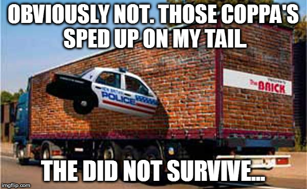 OBVIOUSLY NOT. THOSE COPPA'S SPED UP ON MY TAIL. THE DID NOT SURVIVE... | made w/ Imgflip meme maker