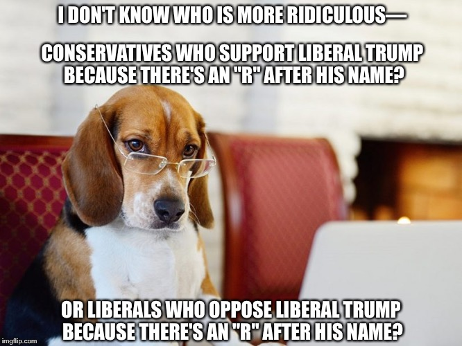 "I don't know who is more ridiculous… | I DON'T KNOW WHO IS MORE RIDICULOUS— OR LIBERALS WHO OPPOSE LIBERAL TRUMP BECAUSE THERE'S AN ""R"" AFTER HIS NAME? CONSERVATIVES WHO SUPPORT L 