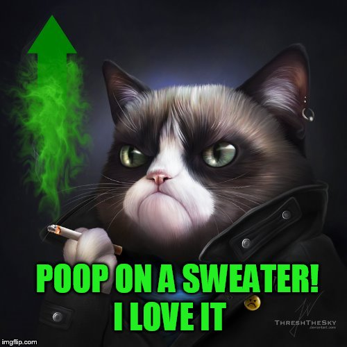 I LOVE IT POOP ON A SWEATER! | made w/ Imgflip meme maker