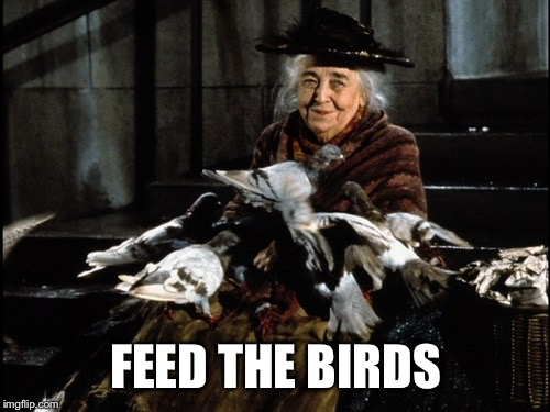 FEED THE BIRDS | made w/ Imgflip meme maker