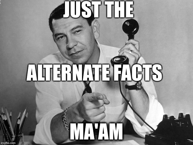 Alternate facts | JUST THE MA'AM ALTERNATE FACTS | image tagged in kellyanne conway | made w/ Imgflip meme maker