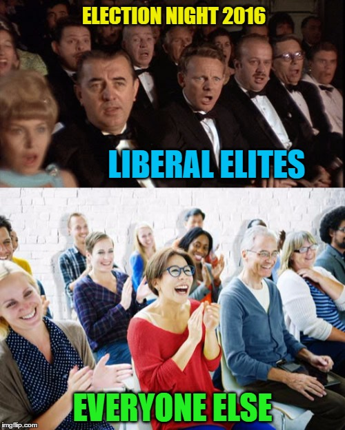 Election Night 2016 | LIBERAL ELITES EVERYONE ELSE ELECTION NIGHT 2016 | image tagged in funny memes,wmp,election 2016 | made w/ Imgflip meme maker