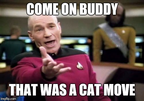 Picard Wtf Meme | COME ON BUDDY THAT WAS A CAT MOVE | image tagged in memes,picard wtf | made w/ Imgflip meme maker