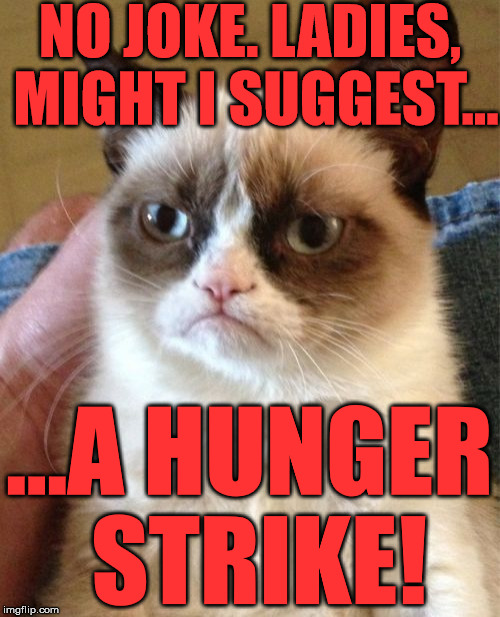 Grumpy Cat Meme | NO JOKE. LADIES, MIGHT I SUGGEST... ...A HUNGER STRIKE! | image tagged in memes,grumpy cat | made w/ Imgflip meme maker
