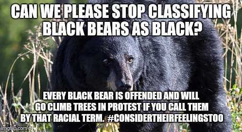 Stop Classifying.... | CAN WE PLEASE STOP CLASSIFYING BLACK BEARS AS BLACK? EVERY BLACK BEAR IS OFFENDED AND WILL GO CLIMB TREES IN PROTEST IF YOU CALL THEM BY THA | image tagged in black bears,blm,protest | made w/ Imgflip meme maker