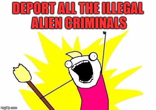 X All The Y Meme | DEPORT ALL THE ILLEGAL ALIEN CRIMINALS | image tagged in memes,x all the y | made w/ Imgflip meme maker