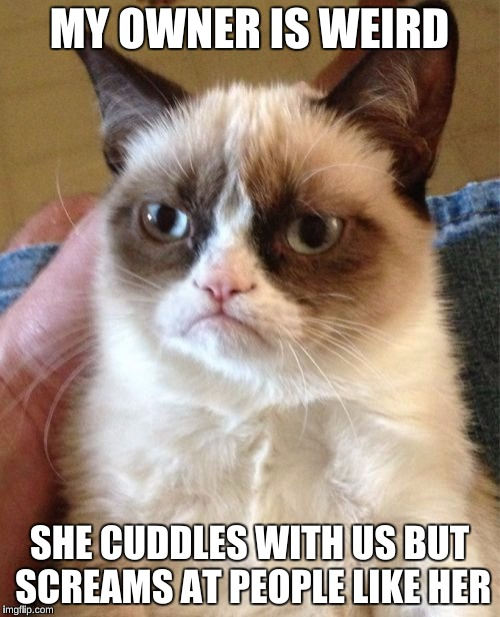 Grumpy Cat Meme | MY OWNER IS WEIRD SHE CUDDLES WITH US BUT SCREAMS AT PEOPLE LIKE HER | image tagged in memes,grumpy cat | made w/ Imgflip meme maker