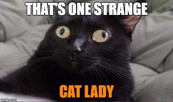 THAT'S ONE STRANGE CAT LADY | made w/ Imgflip meme maker