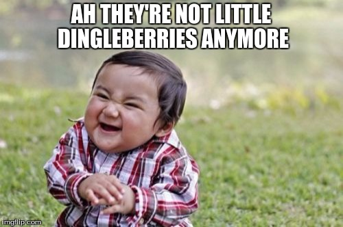 Evil Toddler Meme | AH THEY'RE NOT LITTLE DINGLEBERRIES ANYMORE | image tagged in memes,evil toddler | made w/ Imgflip meme maker