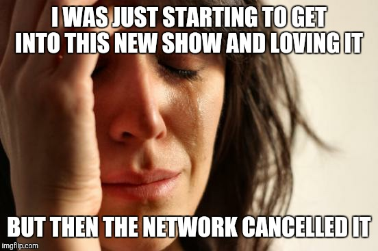First World Problems Meme | I WAS JUST STARTING TO GET INTO THIS NEW SHOW AND LOVING IT BUT THEN THE NETWORK CANCELLED IT | image tagged in memes,first world problems | made w/ Imgflip meme maker