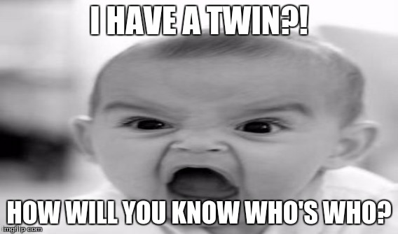 twins | I HAVE A TWIN?! HOW WILL YOU KNOW WHO'S WHO? | image tagged in wonder twins | made w/ Imgflip meme maker