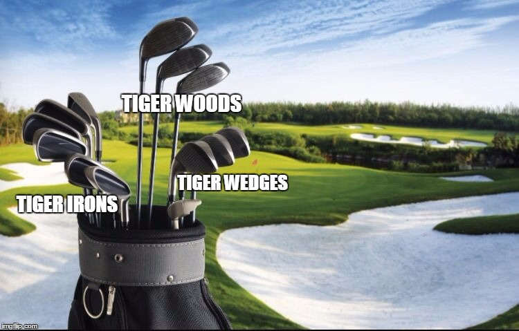 Know your clubs | TIGER IRONS TIGER WOODS TIGER WEDGES | image tagged in tiger woods,golfing | made w/ Imgflip meme maker