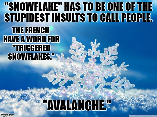 "Sillier than ""libtard."" 