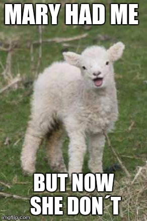 laughing lamb | MARY HAD ME BUT NOW SHE DON´T | image tagged in laughing lamb | made w/ Imgflip meme maker