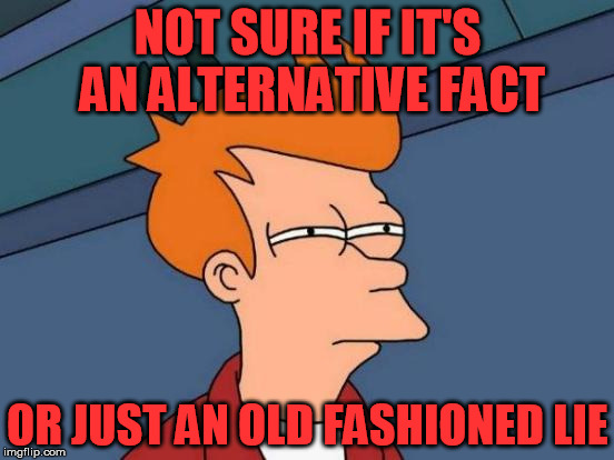 alternative fact | NOT SURE IF IT'S AN ALTERNATIVE FACT OR JUST AN OLD FASHIONED LIE | image tagged in memes,futurama fry,alternative facts | made w/ Imgflip meme maker