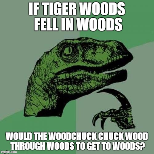 Philosoraptor Meme | IF TIGER WOODS FELL IN WOODS WOULD THE WOODCHUCK CHUCK WOOD THROUGH WOODS TO GET TO WOODS? | image tagged in memes,philosoraptor | made w/ Imgflip meme maker