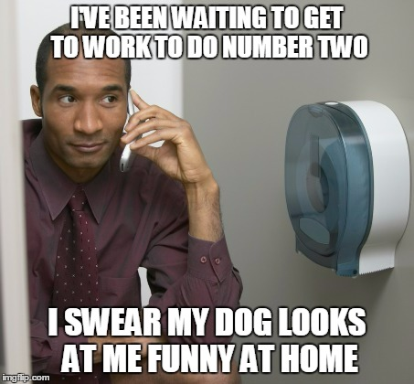 I'VE BEEN WAITING TO GET TO WORK TO DO NUMBER TWO I SWEAR MY DOG LOOKS AT ME FUNNY AT HOME | made w/ Imgflip meme maker