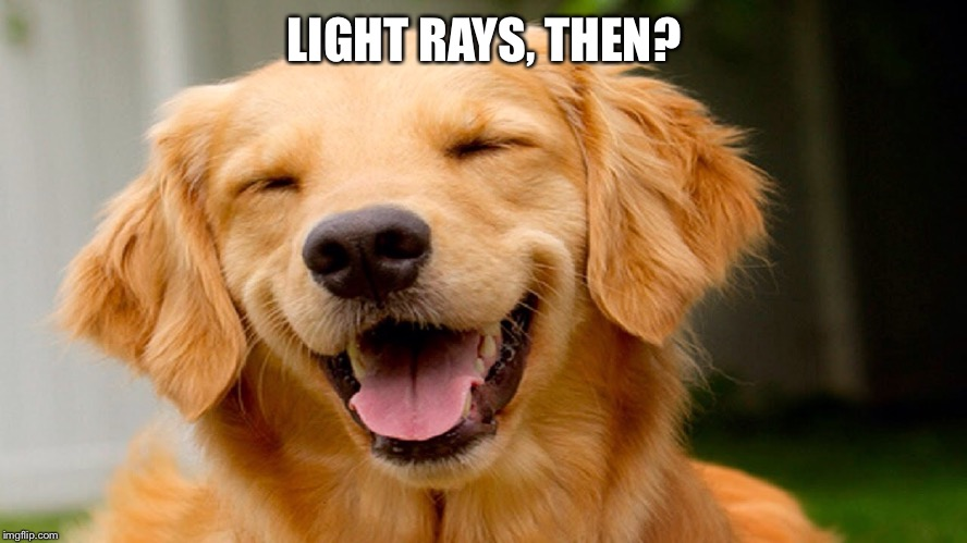 Laughing Dog | LIGHT RAYS, THEN? | image tagged in laughing dog | made w/ Imgflip meme maker