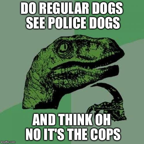 Philosoraptor Meme | DO REGULAR DOGS SEE POLICE DOGS AND THINK OH NO IT'S THE COPS | image tagged in memes,philosoraptor | made w/ Imgflip meme maker