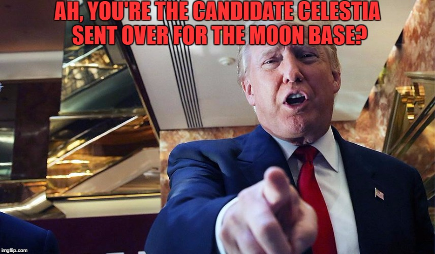 Trump Burn | AH, YOU'RE THE CANDIDATE CELESTIA SENT OVER FOR THE MOON BASE? | image tagged in trump burn | made w/ Imgflip meme maker