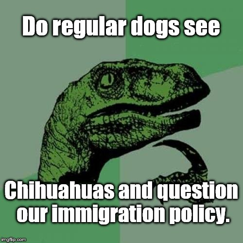 Philosoraptor Meme | Do regular dogs see Chihuahuas and question our immigration policy. | image tagged in memes,philosoraptor | made w/ Imgflip meme maker