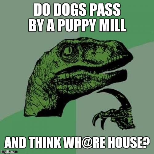 Philosoraptor Meme | DO DOGS PASS BY A PUPPY MILL AND THINK WH@RE HOUSE? | image tagged in memes,philosoraptor | made w/ Imgflip meme maker