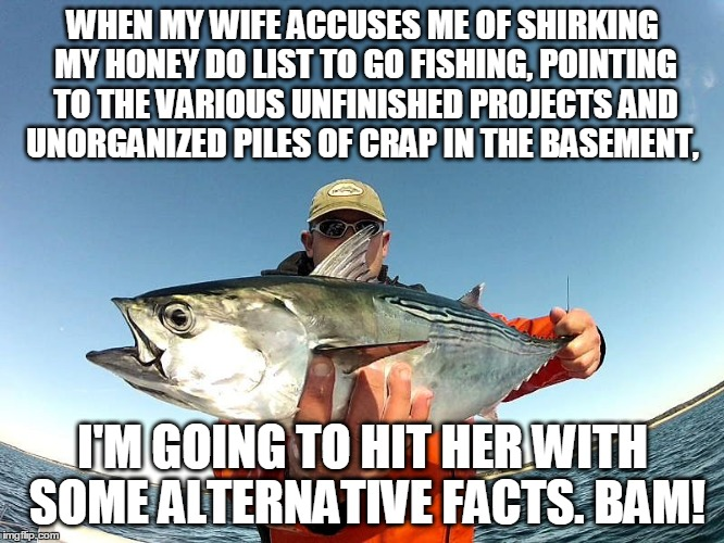 A Fisherman's Answer |  WHEN MY WIFE ACCUSES ME OF SHIRKING MY HONEY DO LIST TO GO FISHING, POINTING TO THE VARIOUS UNFINISHED PROJECTS AND UNORGANIZED PILES OF CRAP IN THE BASEMENT, I'M GOING TO HIT HER WITH SOME ALTERNATIVE FACTS. BAM! | image tagged in kellyanne conway alternative facts,whynotfishing,anglerapproved | made w/ Imgflip meme maker