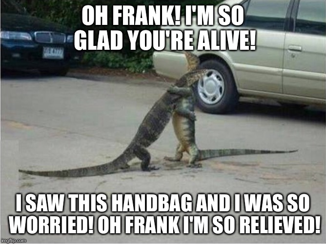OH FRANK! I'M SO GLAD YOU'RE ALIVE! I SAW THIS HANDBAG AND I WAS SO WORRIED! OH FRANK I'M SO RELIEVED! | image tagged in iguanas hugging | made w/ Imgflip meme maker