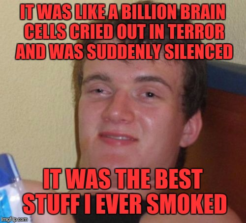 10 Guy Meme | IT WAS LIKE A BILLION BRAIN CELLS CRIED OUT IN TERROR AND WAS SUDDENLY SILENCED IT WAS THE BEST STUFF I EVER SMOKED | image tagged in memes,10 guy | made w/ Imgflip meme maker