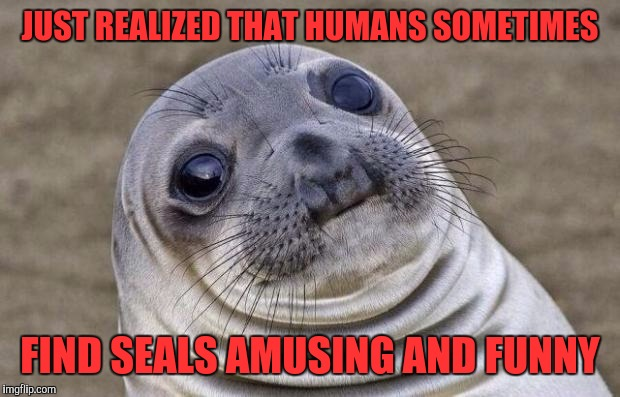 Awkward Moment Sealion Meme | JUST REALIZED THAT HUMANS SOMETIMES FIND SEALS AMUSING AND FUNNY | image tagged in memes,awkward moment sealion | made w/ Imgflip meme maker