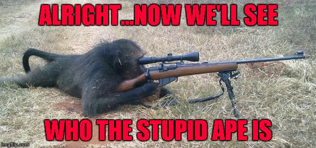 If this picture is real, it's time to be very afraid!!! | ALRIGHT...NOW WE'LL SEE WHO THE STUPID APE IS | image tagged in sniper monkey,memes,monkey,funny,angry baboon,animals | made w/ Imgflip meme maker