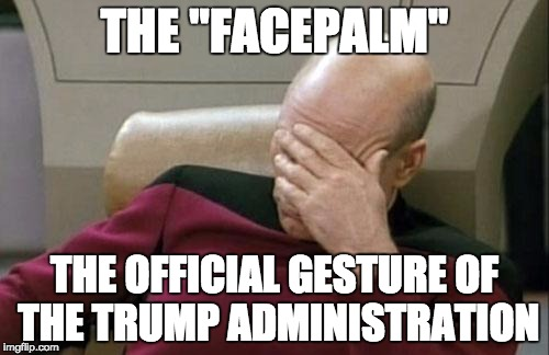 "The Official Gesture of the Trump Administration | THE ""FACEPALM"" THE OFFICIAL GESTURE OF THE TRUMP ADMINISTRATION 