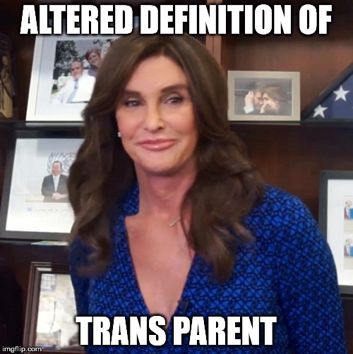 ALTERED DEFINITION OF TRANS PARENT | made w/ Imgflip meme maker