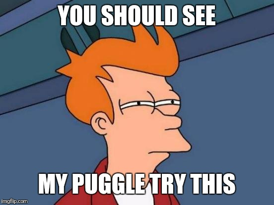 Futurama Fry Meme | YOU SHOULD SEE MY PUGGLE TRY THIS | image tagged in memes,futurama fry | made w/ Imgflip meme maker