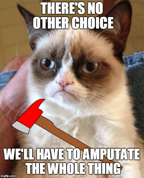 Grumpy Cat Meme | THERE'S NO OTHER CHOICE WE'LL HAVE TO AMPUTATE THE WHOLE THING | image tagged in memes,grumpy cat | made w/ Imgflip meme maker