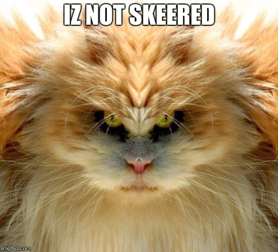 IZ NOT SKEERED | made w/ Imgflip meme maker