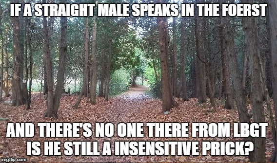 IF A STRAIGHT MALE SPEAKS IN THE FOERST AND THERE'S NO ONE THERE FROM LBGT IS HE STILL A INSENSITIVE PRICK? | image tagged in lgbq | made w/ Imgflip meme maker