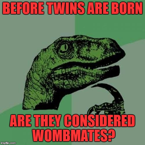 Philosoraptor Meme | BEFORE TWINS ARE BORN ARE THEY CONSIDERED WOMBMATES? | image tagged in memes,philosoraptor | made w/ Imgflip meme maker