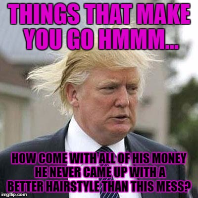Donald Trump | THINGS THAT MAKE YOU GO HMMM... HOW COME WITH ALL OF HIS MONEY HE NEVER CAME UP WITH A BETTER HAIRSTYLE THAN THIS MESS? | image tagged in donald trump | made w/ Imgflip meme maker