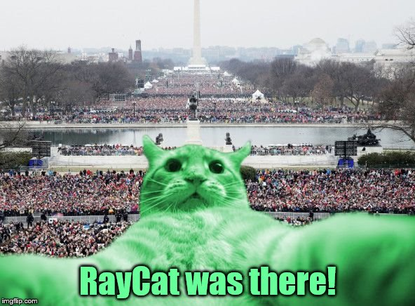 RayCat was there! | image tagged in raycat inauguration,memes | made w/ Imgflip meme maker