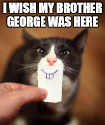 I love the classics.  .. | I WISH MY BROTHER GEORGE WAS HERE | image tagged in memes,cats,funny,looney | made w/ Imgflip meme maker